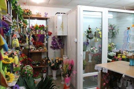 холодильная камера для цветов купить